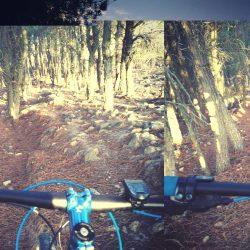 Mantenimiento de sendas: senda Ortiz-Ossorio