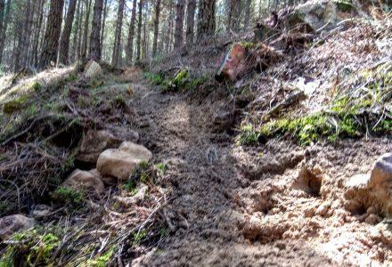 Nuevo tramo de senda en Arrabalde