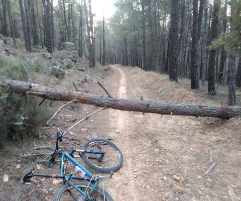 Obstáculos en Arrabalde